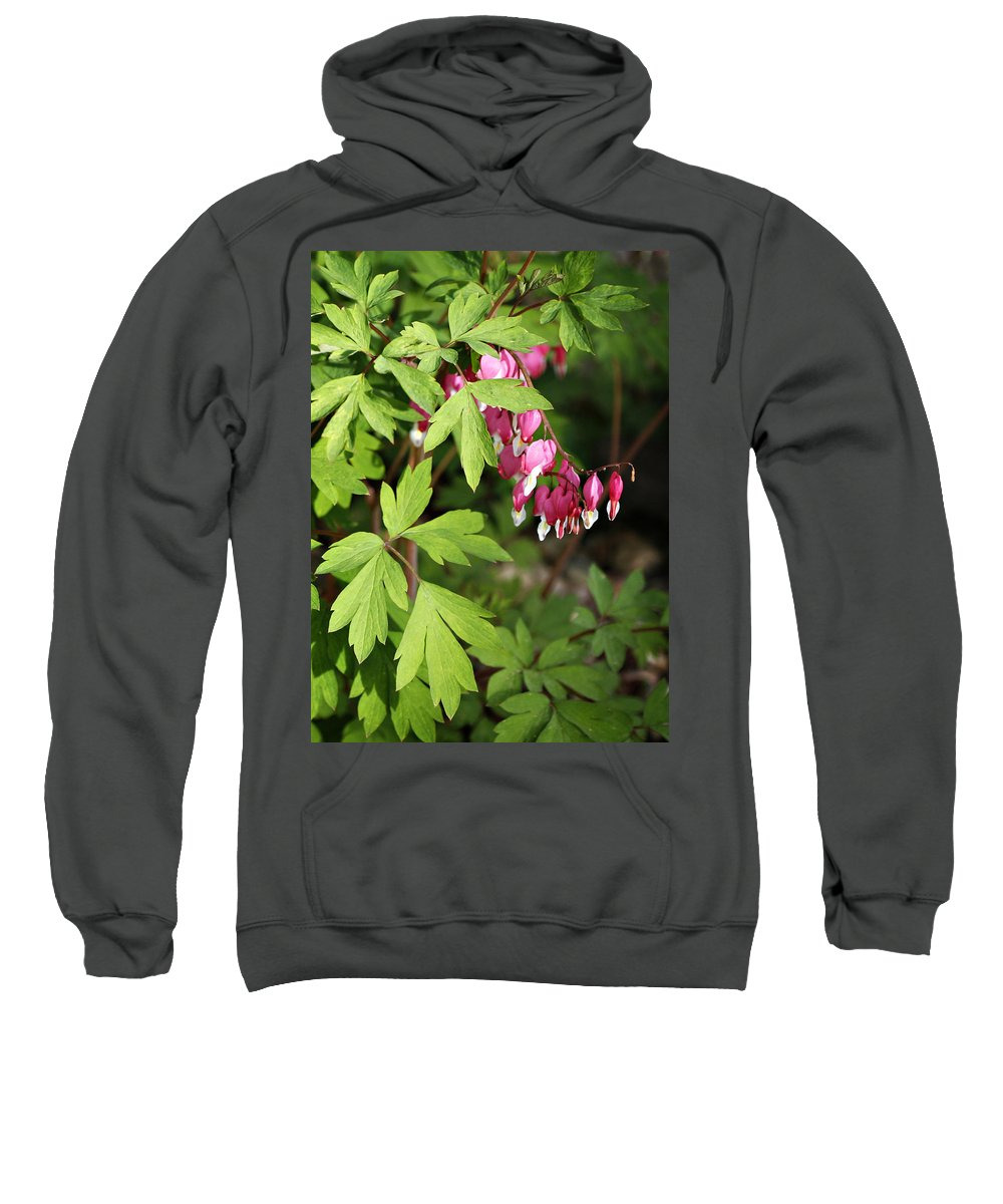 Flower Sweatshirt featuring the photograph String Of Hearts by Marilyn Hunt