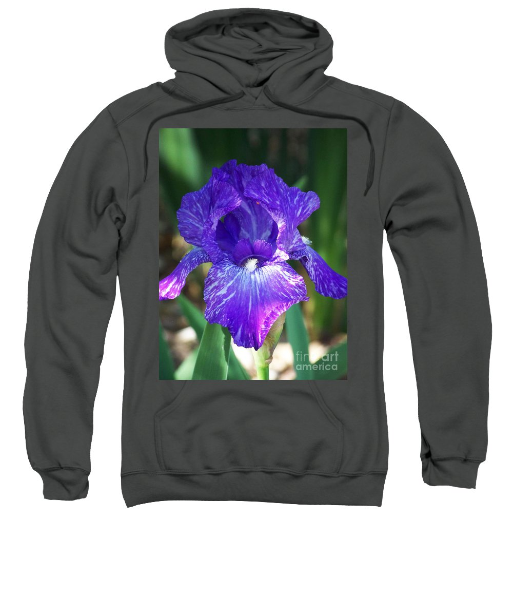 Flowers Sweatshirt featuring the photograph Striped Blue Iris by Kathy McClure