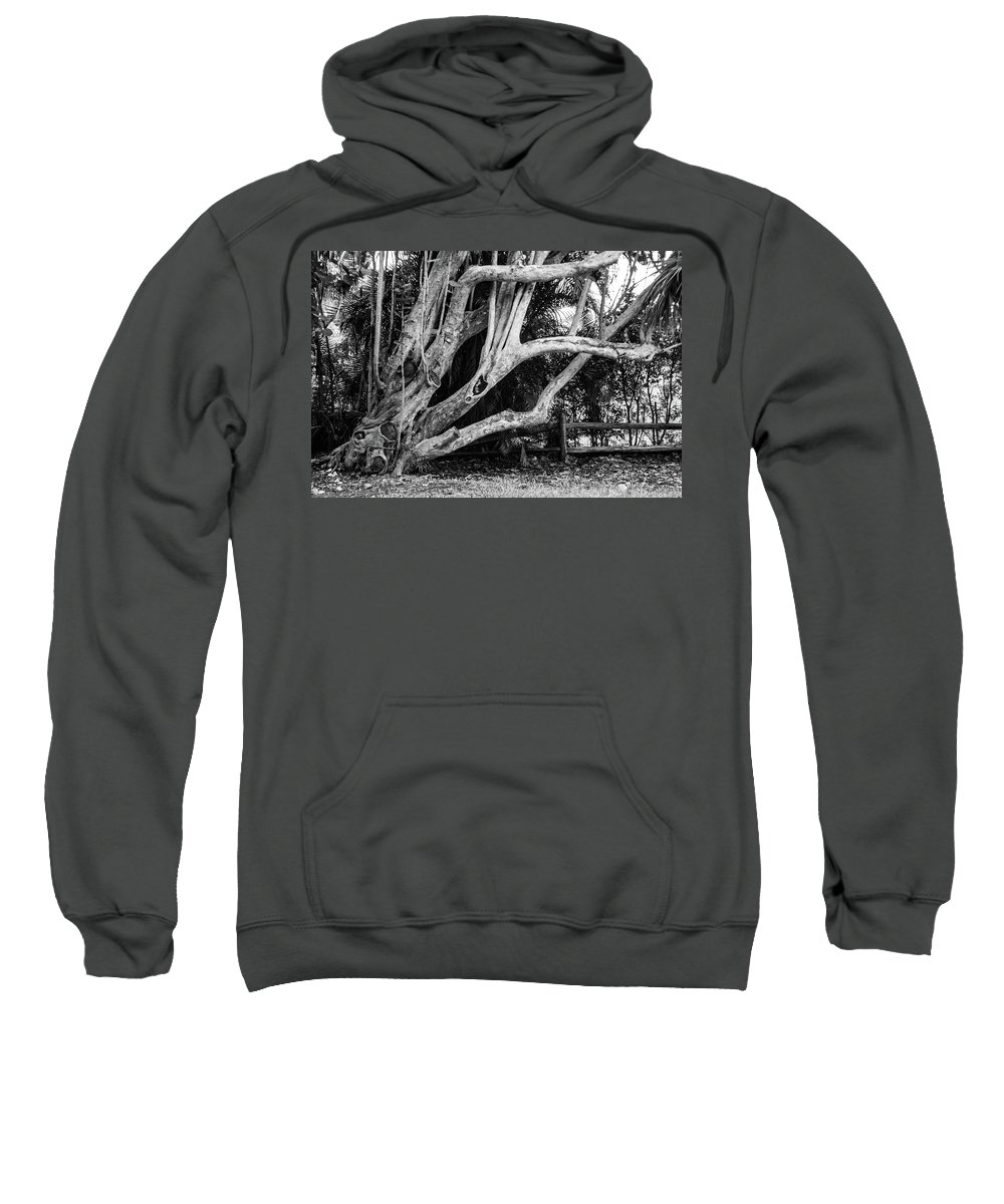 Landscape Sweatshirt featuring the photograph Struggles by Stephen Gray
