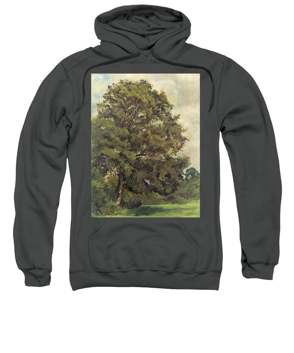 Xyc220952 Sweatshirt featuring the photograph Study Of An Ash Tree by Lionel Constable