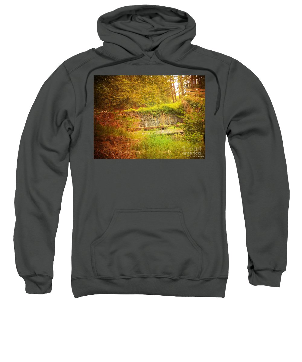 Rock Sweatshirt featuring the photograph Stumbled Upon by Paulette B Wright