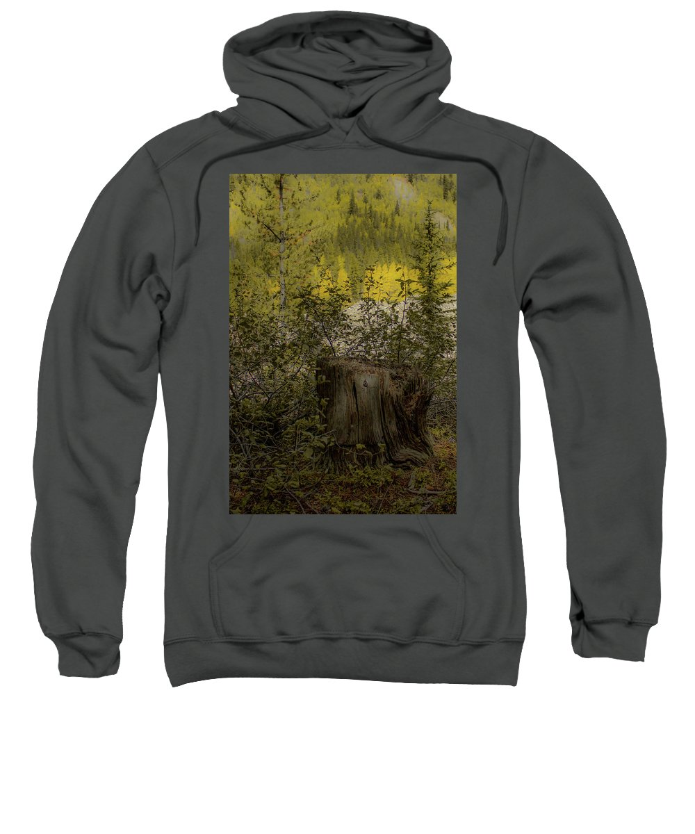 Breckenridge Sweatshirt featuring the photograph Stumped by Lisa Scammell