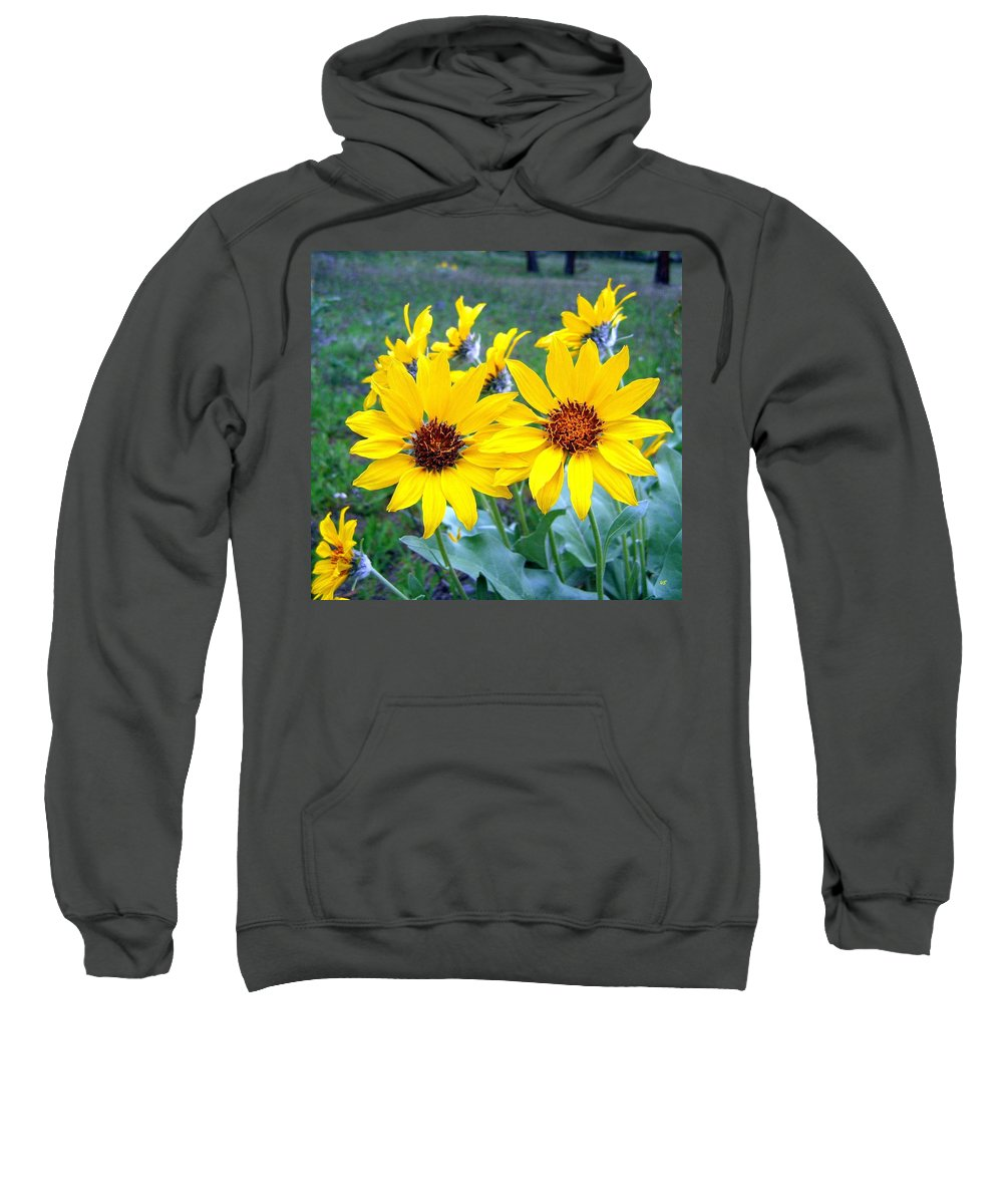 Sunflowers Sweatshirt featuring the photograph Stunning Wild Sunflowers by Will Borden
