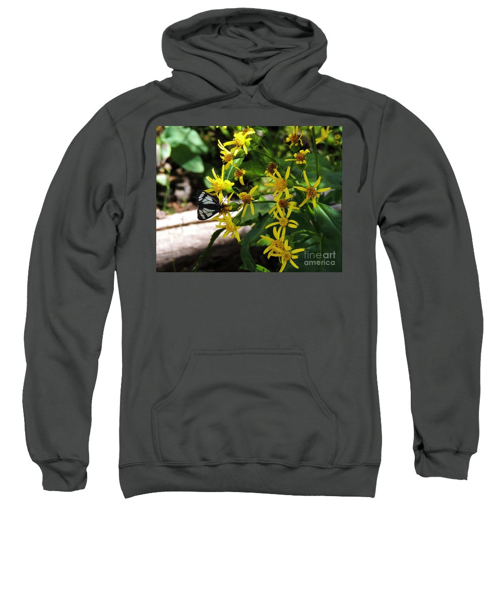 Black Sweatshirt featuring the photograph Sucking Nectar by Grant Bolei