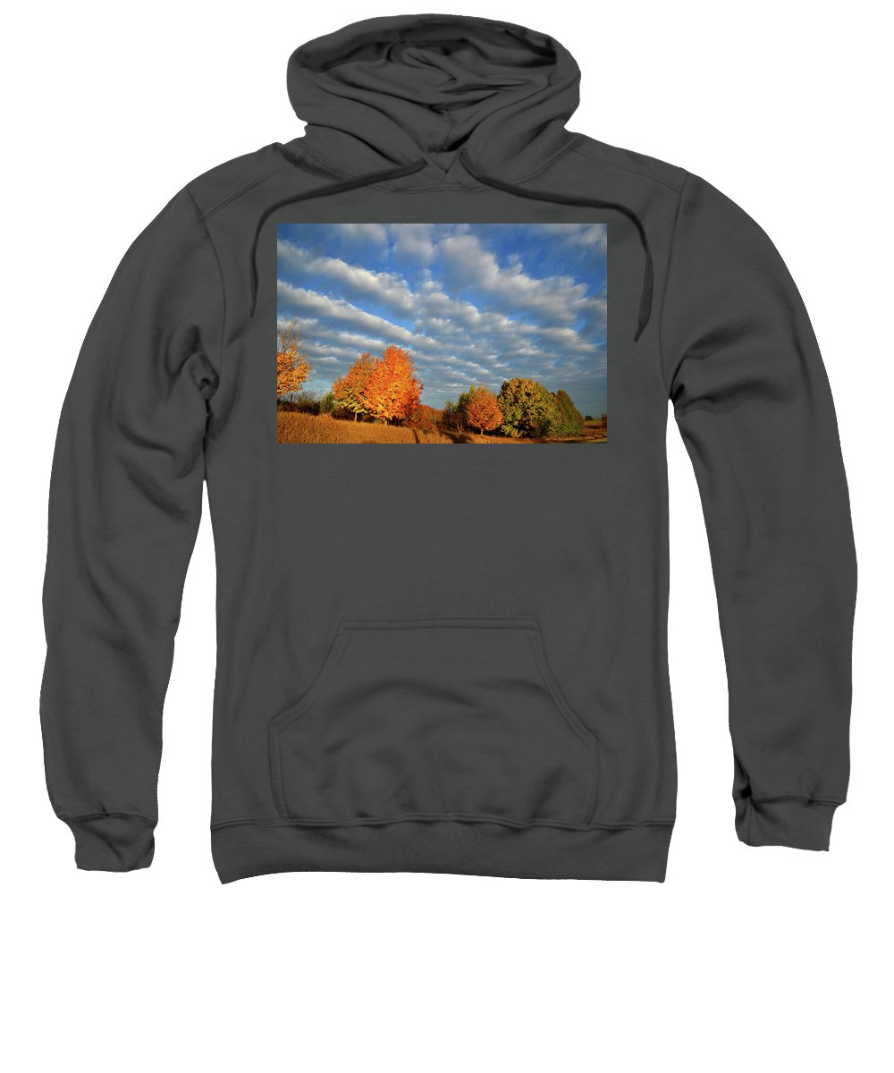 Mchenry County Conservation District Sweatshirt featuring the photograph Sugar Maple Sunrise Along Route 31 by Ray Mathis