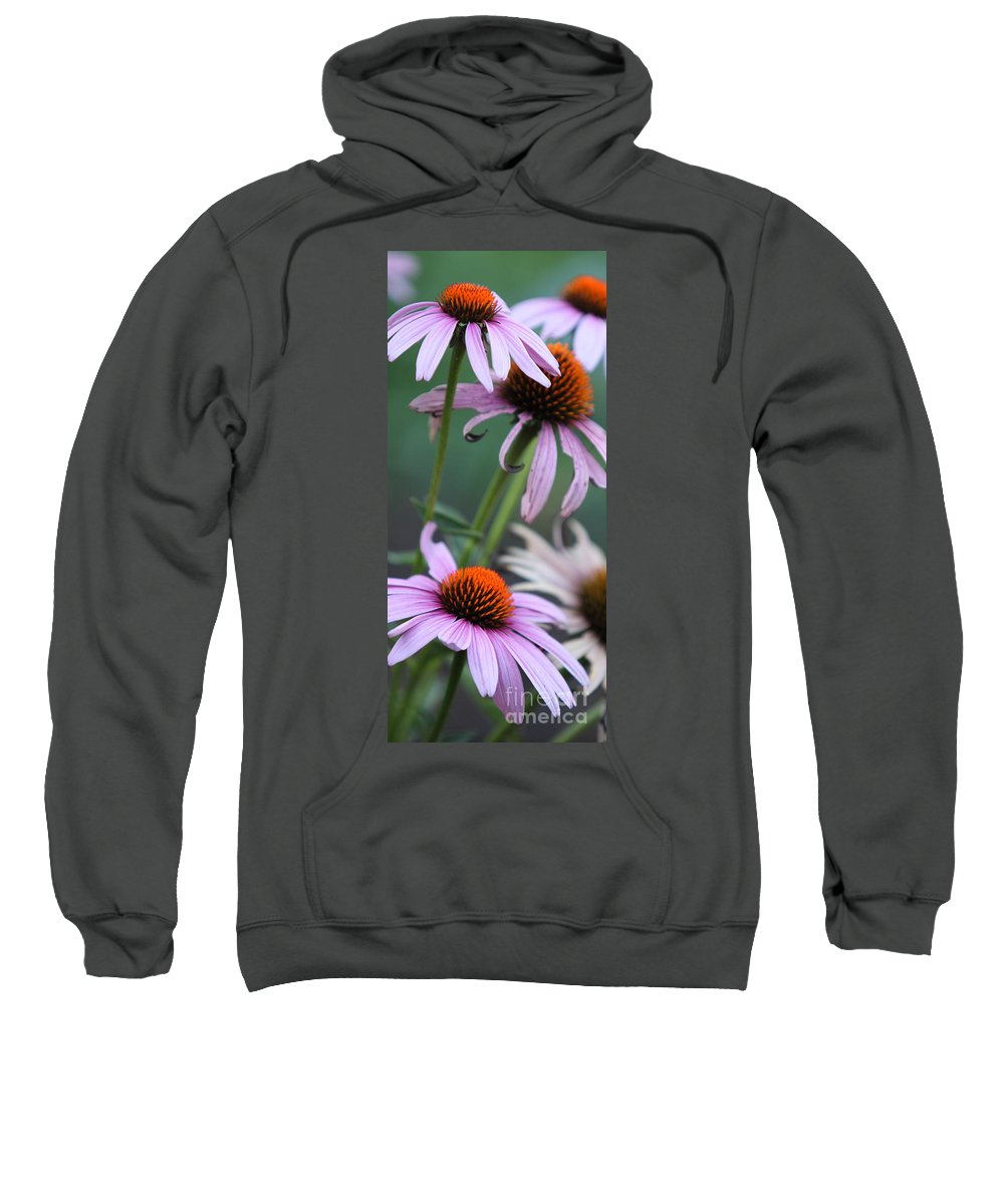 Echinacea Sweatshirt featuring the photograph Summer by Amanda Barcon