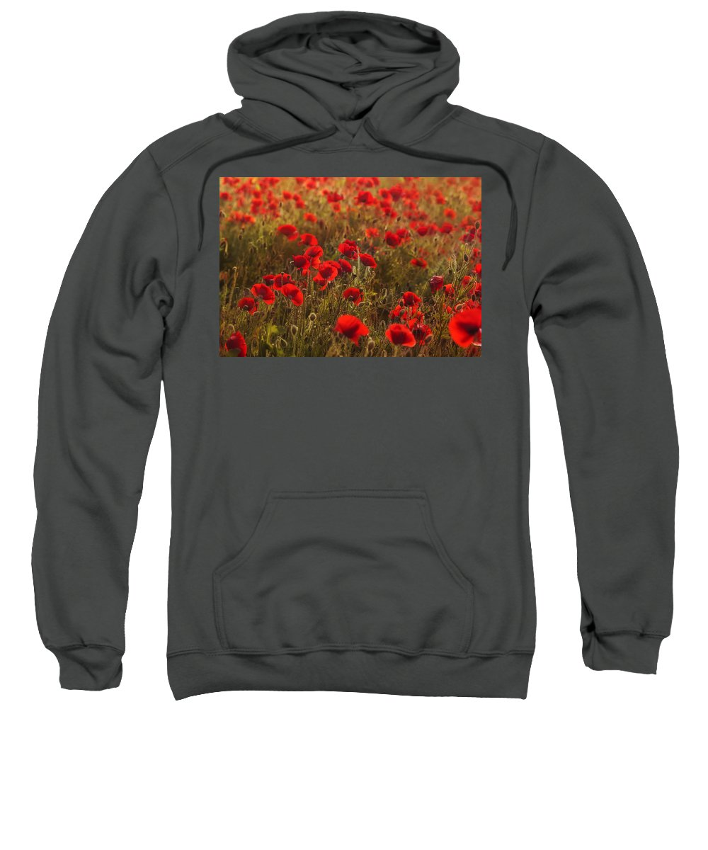 Poppy Sweatshirt featuring the photograph Summer Feelling by Claudia Moeckel