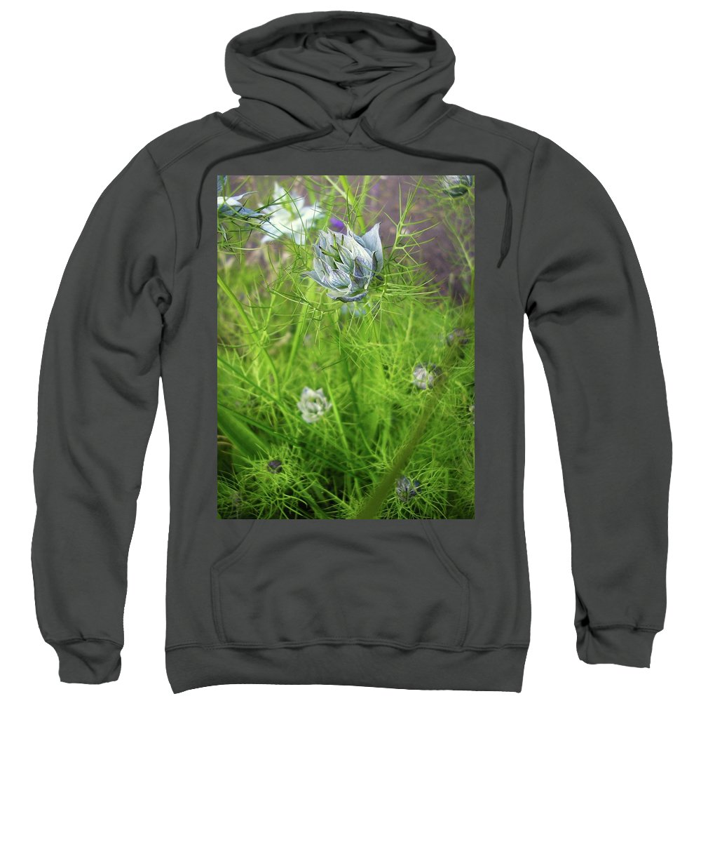 Flowers Sweatshirt featuring the photograph Summer Flowers by Louise Macarthur Art and Photography