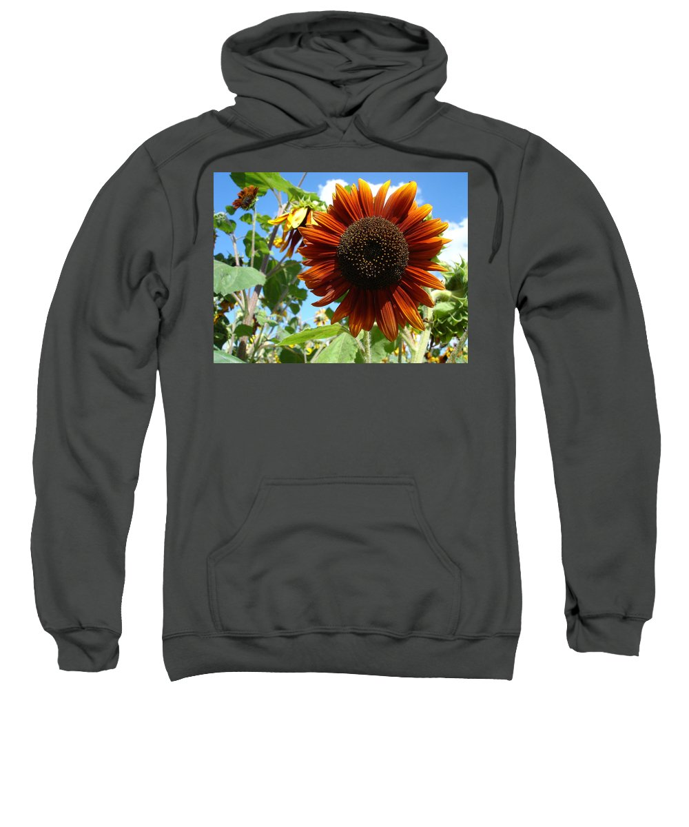 Sunflower Sweatshirt featuring the photograph Summers Here by Susan Baker
