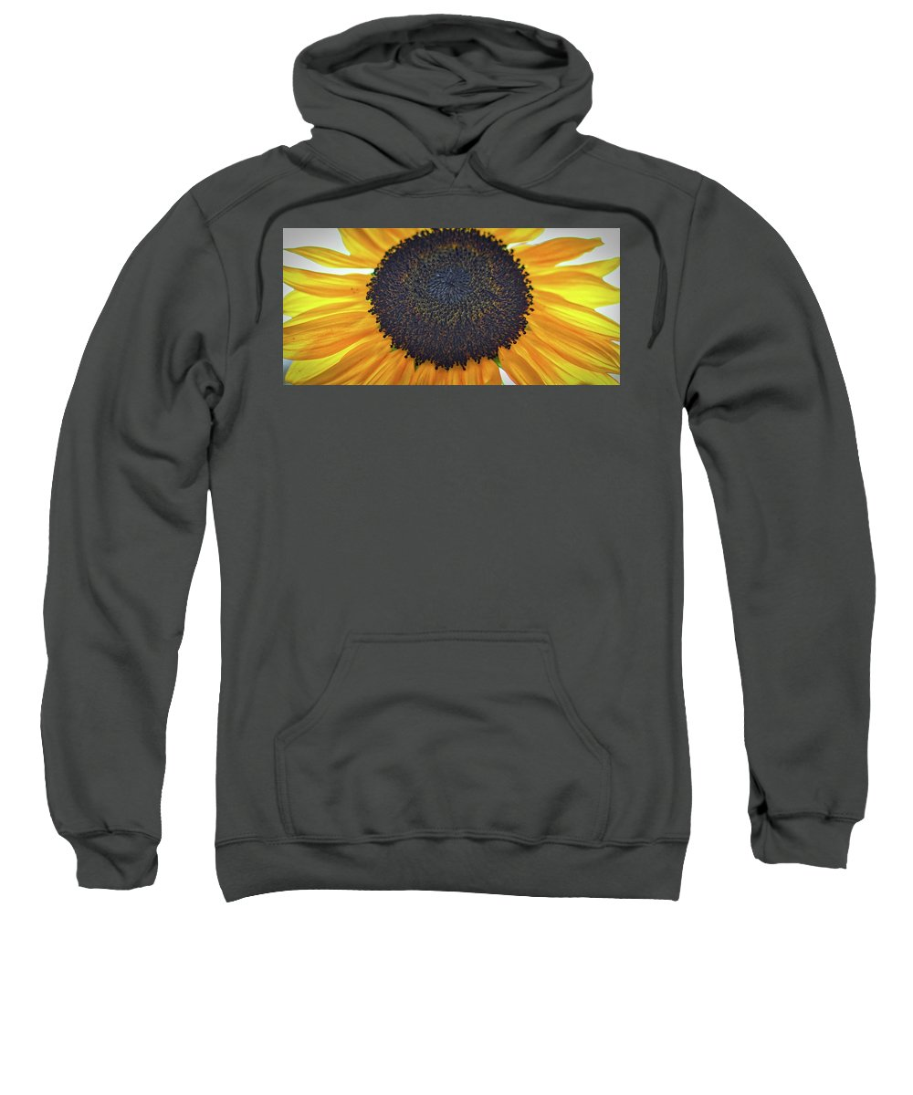 #sunflaower Sweatshirt featuring the photograph Sun Flower by Christie Wilson