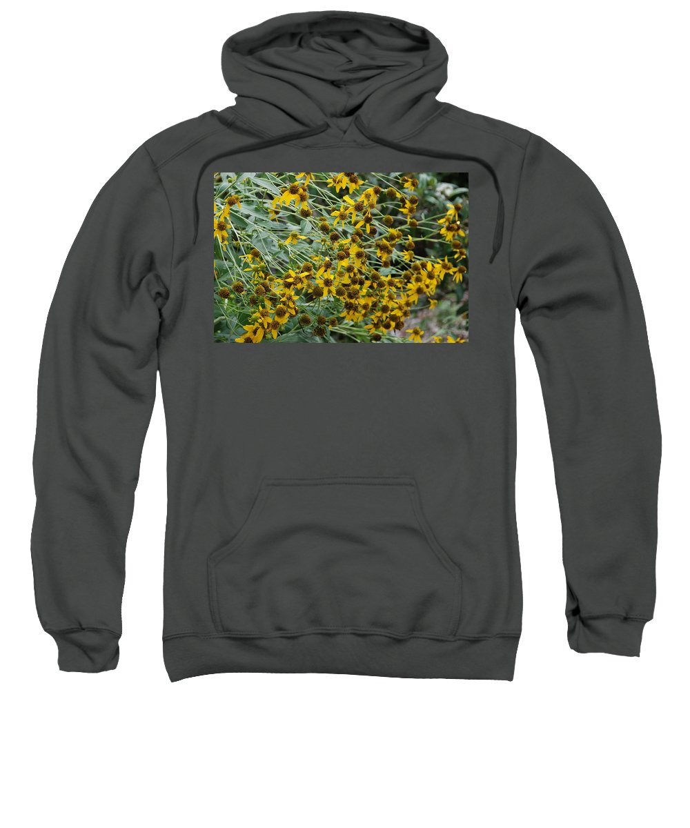 Macro Sweatshirt featuring the photograph Sun Flowers by Rob Hans