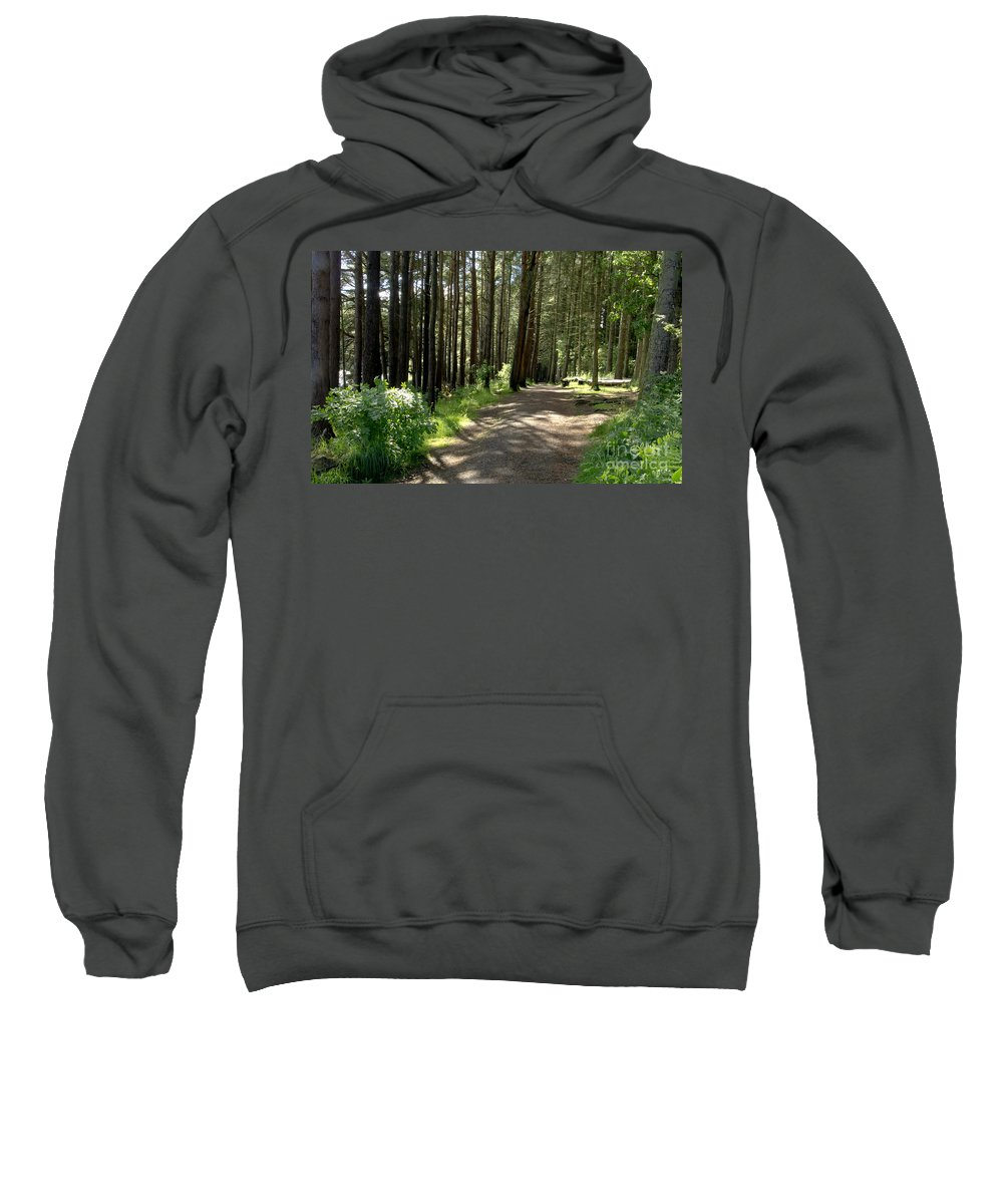 Beecraigs Sweatshirt featuring the photograph Sun In The Forest. by Elena Perelman