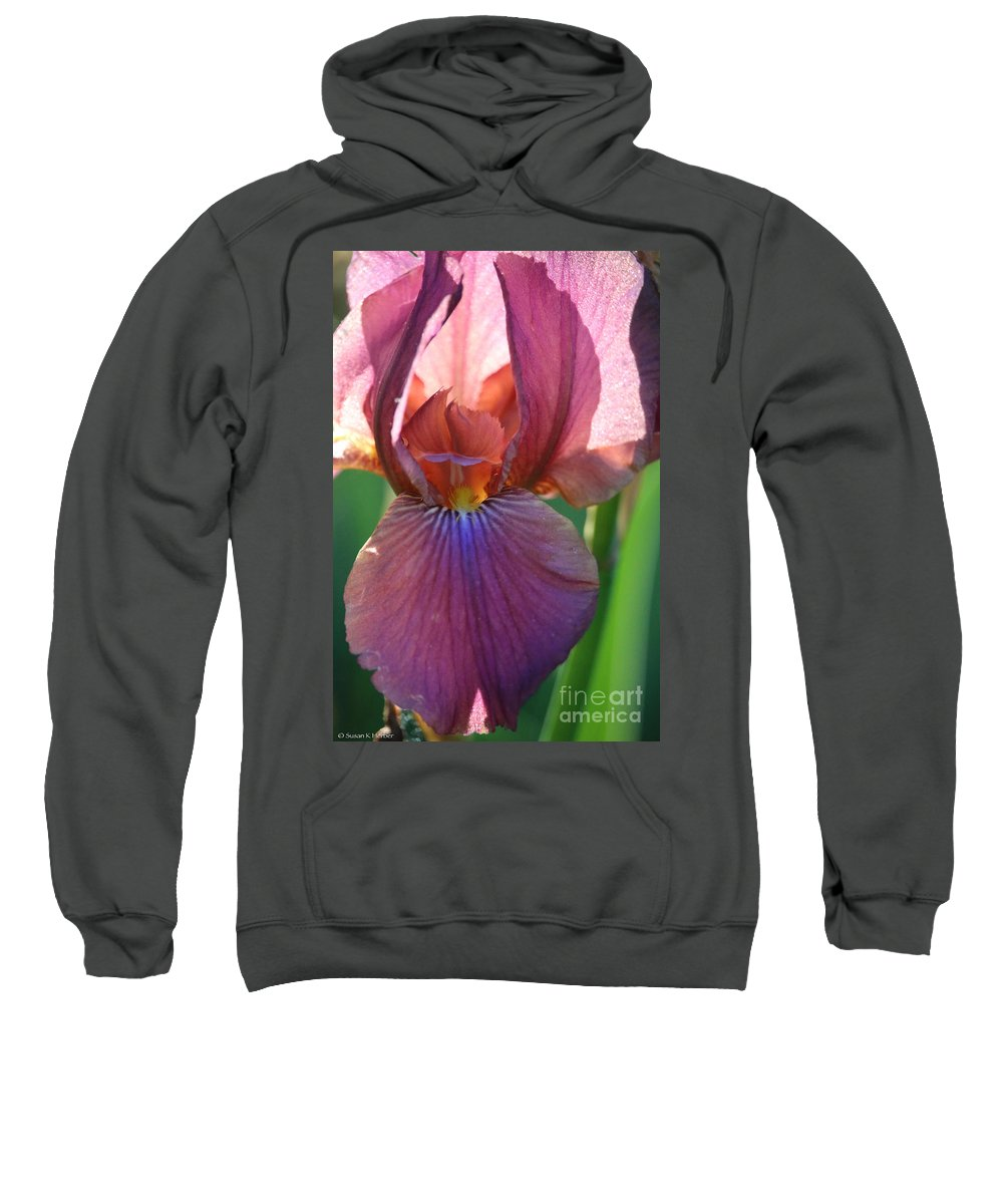 Flower Sweatshirt featuring the photograph Sun Soaked Morning by Susan Herber