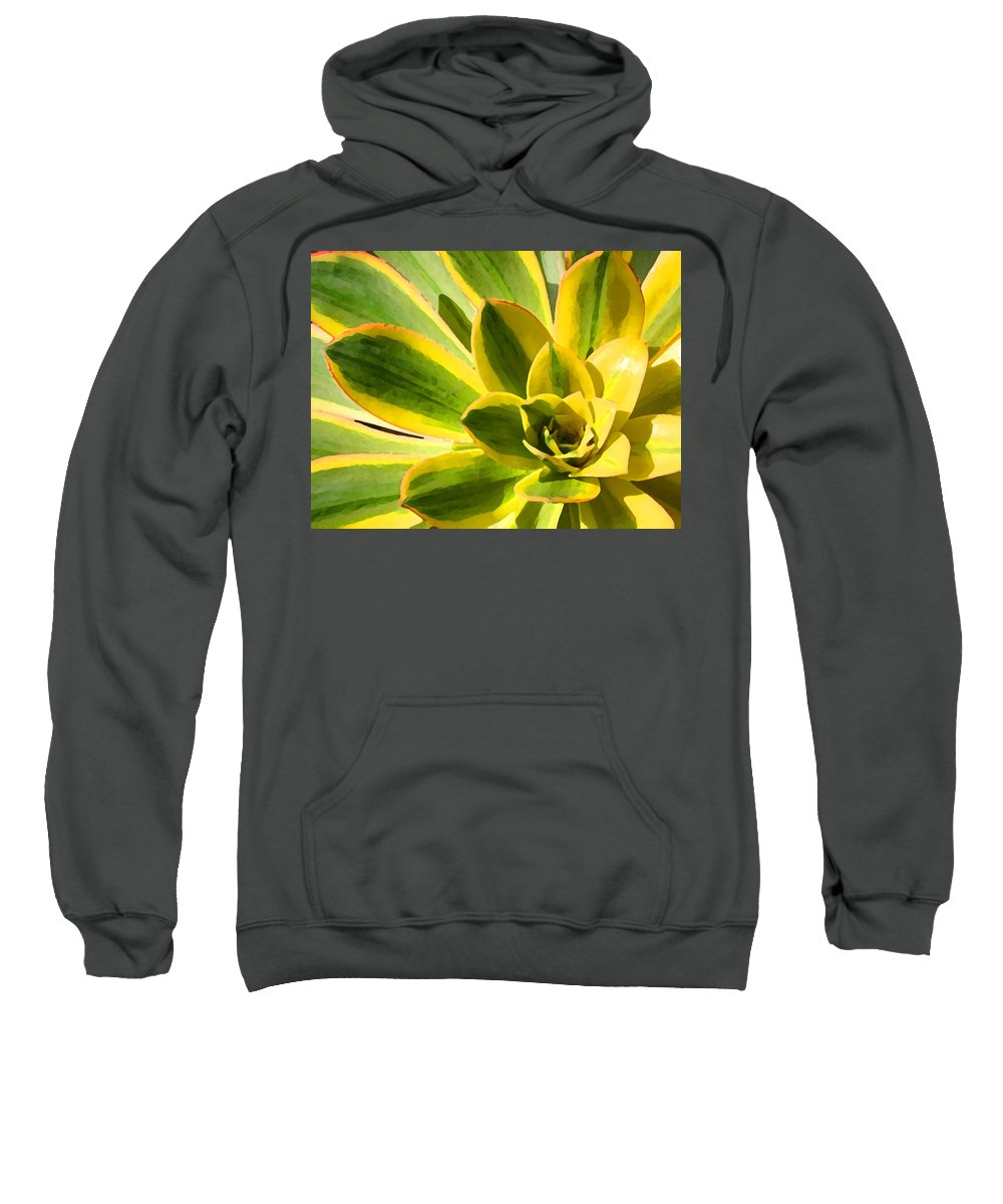 Landscape Sweatshirt featuring the photograph Sunburst Succulent Close-up 2 by Amy Vangsgard