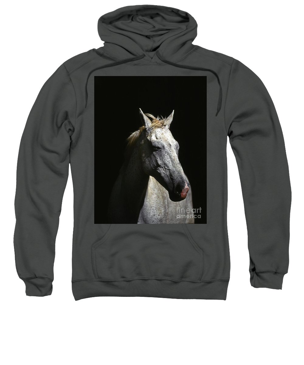 Horse Sweatshirt featuring the photograph Sundance by Jim Cazel