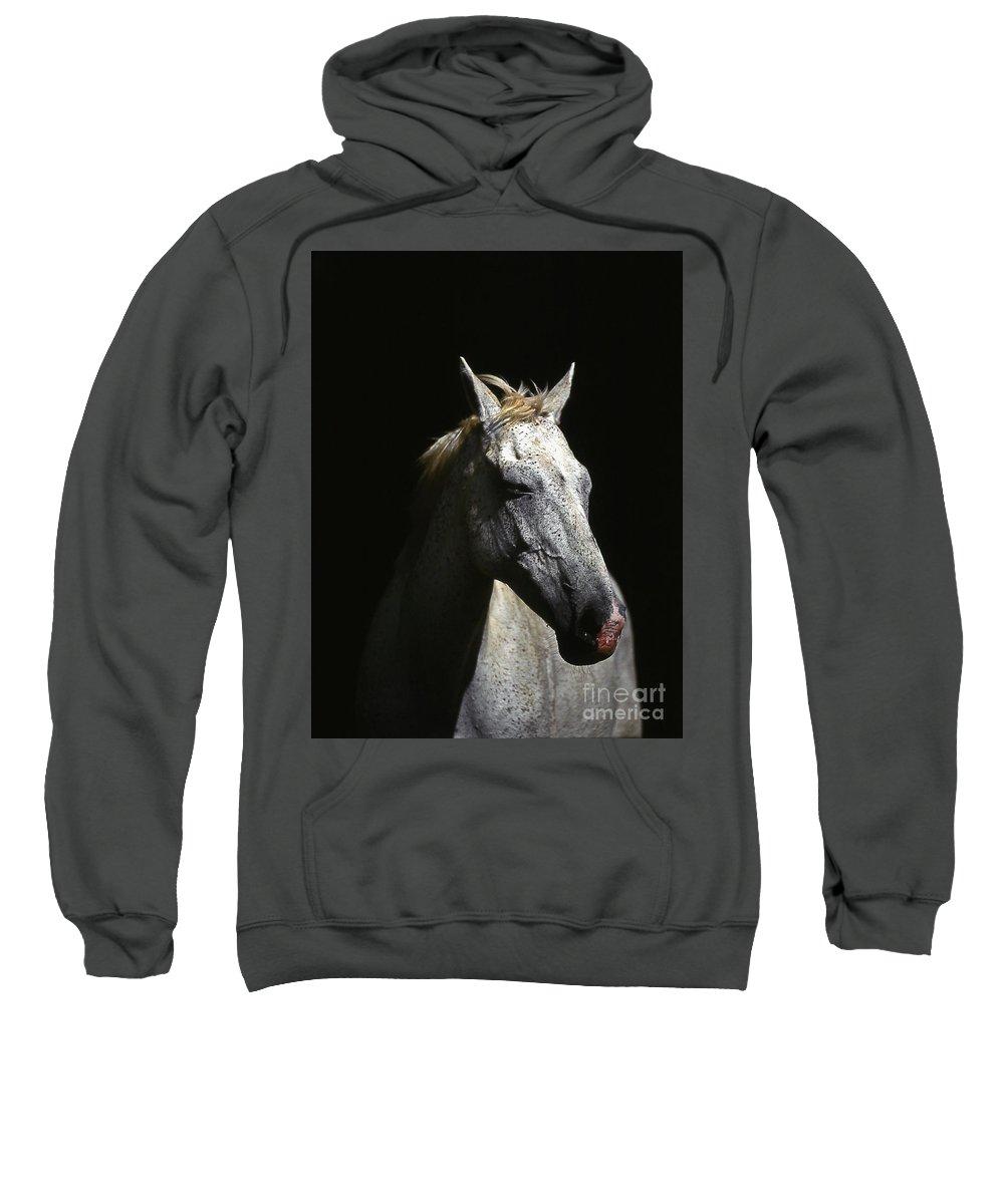 Horse Sweatshirt featuring the photograph Sundance by Jim Cazel