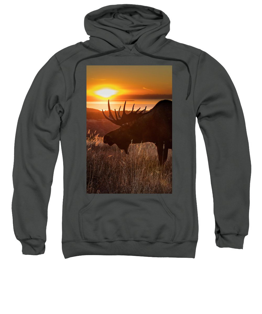 Adult Sweatshirt featuring the photograph Sunet Silhouette by Tim Grams