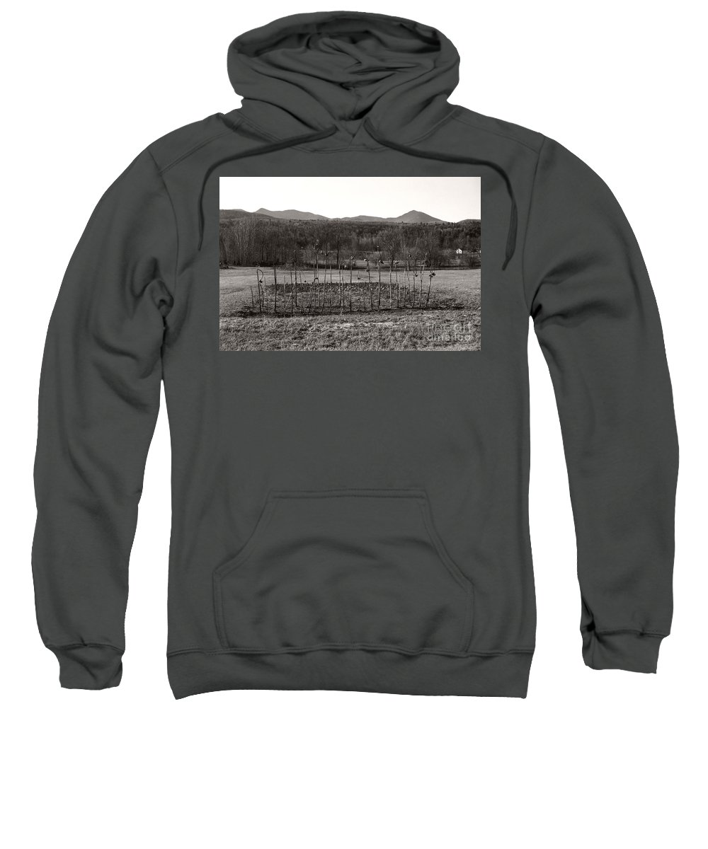 Sweatshirt featuring the photograph Sunflower Plot by Heather Kirk