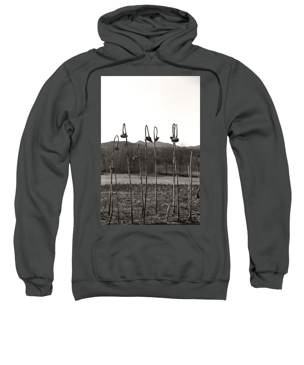 Sweatshirt featuring the photograph Sunflower Swingset by Heather Kirk