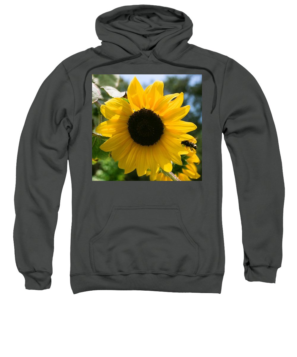 Flower Sweatshirt featuring the photograph Sunflower With Bee by Dean Triolo