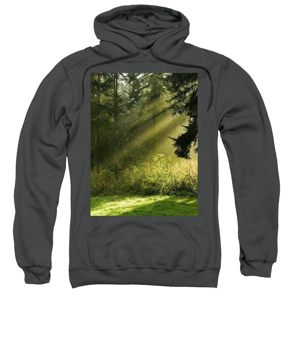 Nature Sweatshirt featuring the photograph Sunlight by Daniel Csoka
