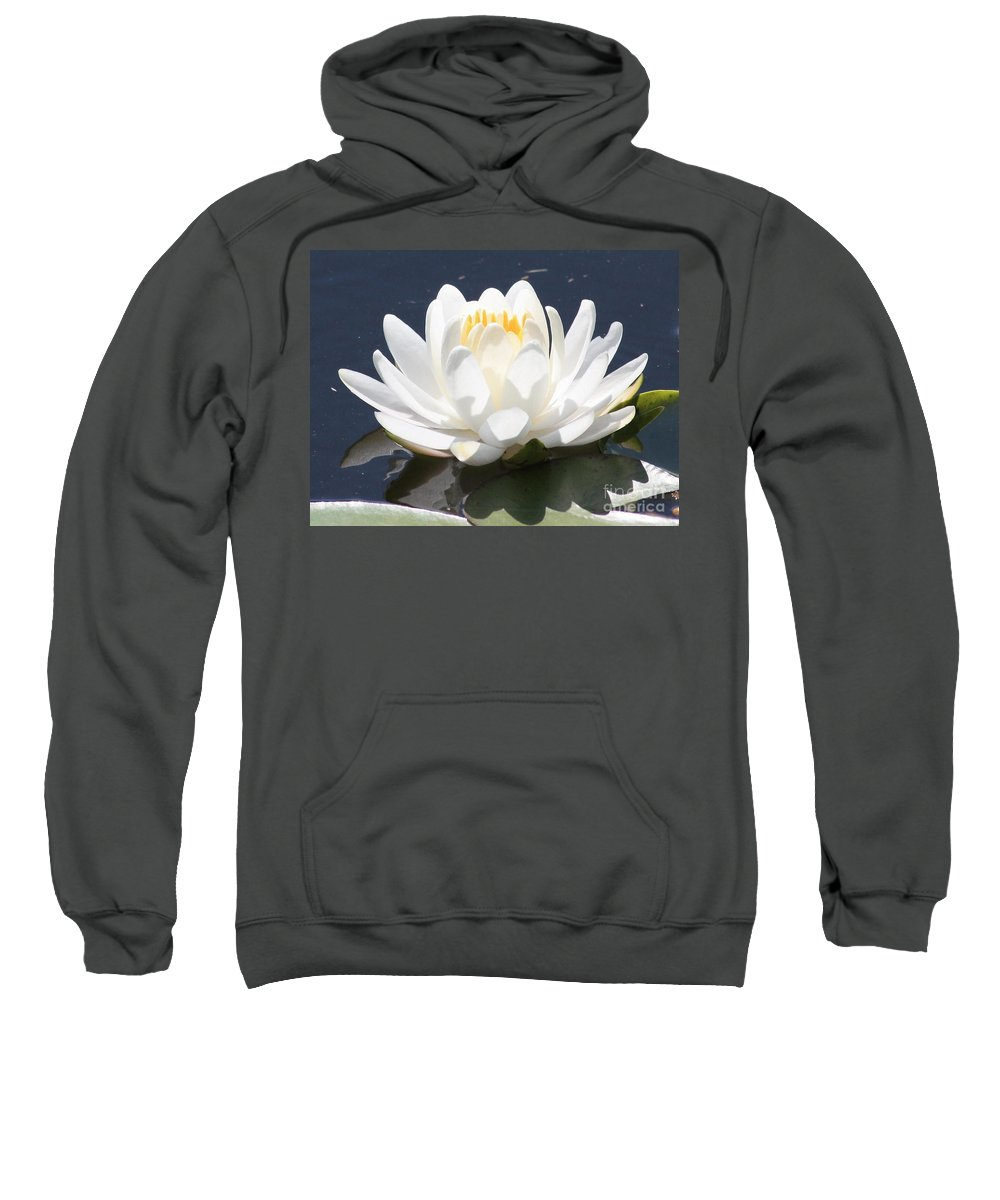 Flower Sweatshirt featuring the photograph Sunlight On Water Lily by Carol Groenen
