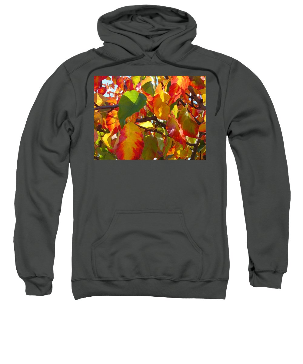 Fall Leaves Sweatshirt featuring the photograph Sunlit Fall Leaves by Amy Vangsgard