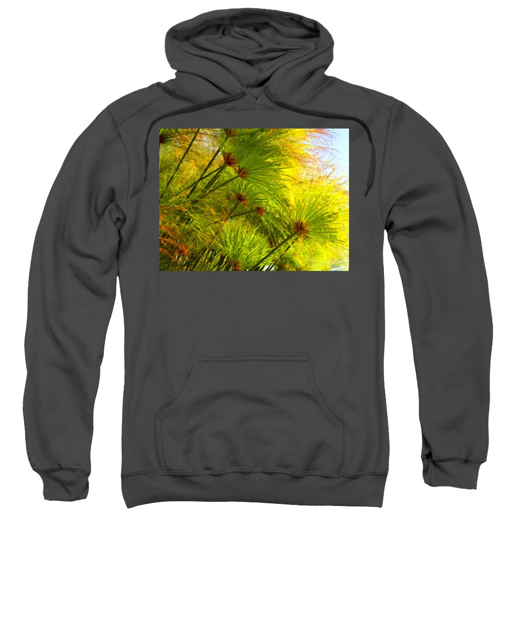 Landscape Sweatshirt featuring the painting Sunlit Paparus by Amy Vangsgard