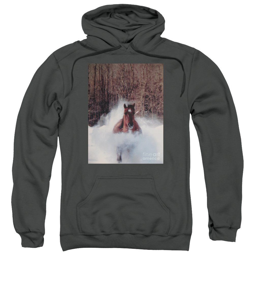 Horse Running Sweatshirt featuring the photograph Sunny Running For The Barn. by Jeffrey Koss