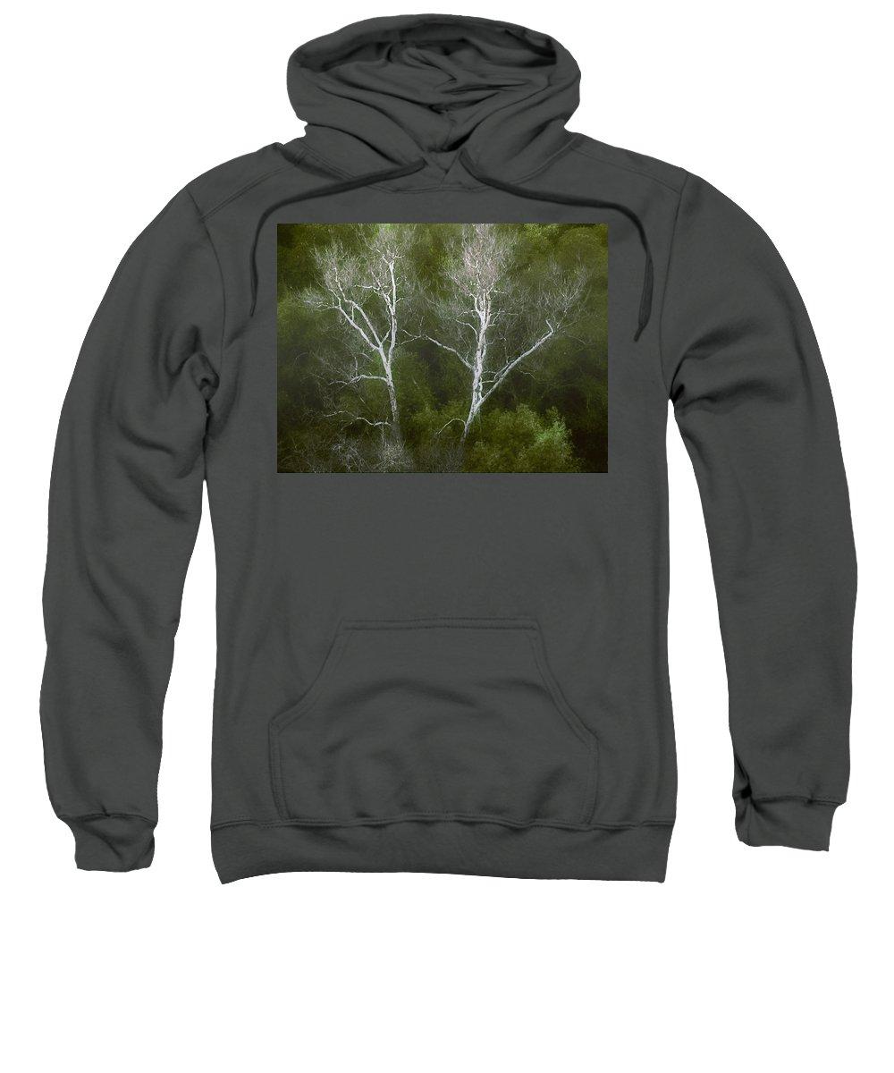 Landscape Sweatshirt featuring the photograph Sunol - Twins by Karen W Meyer