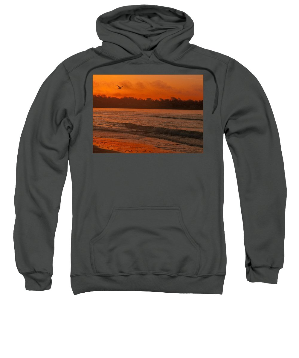 Sunrise Sweatshirt featuring the photograph Sunrise With Seagull by Steven Natanson