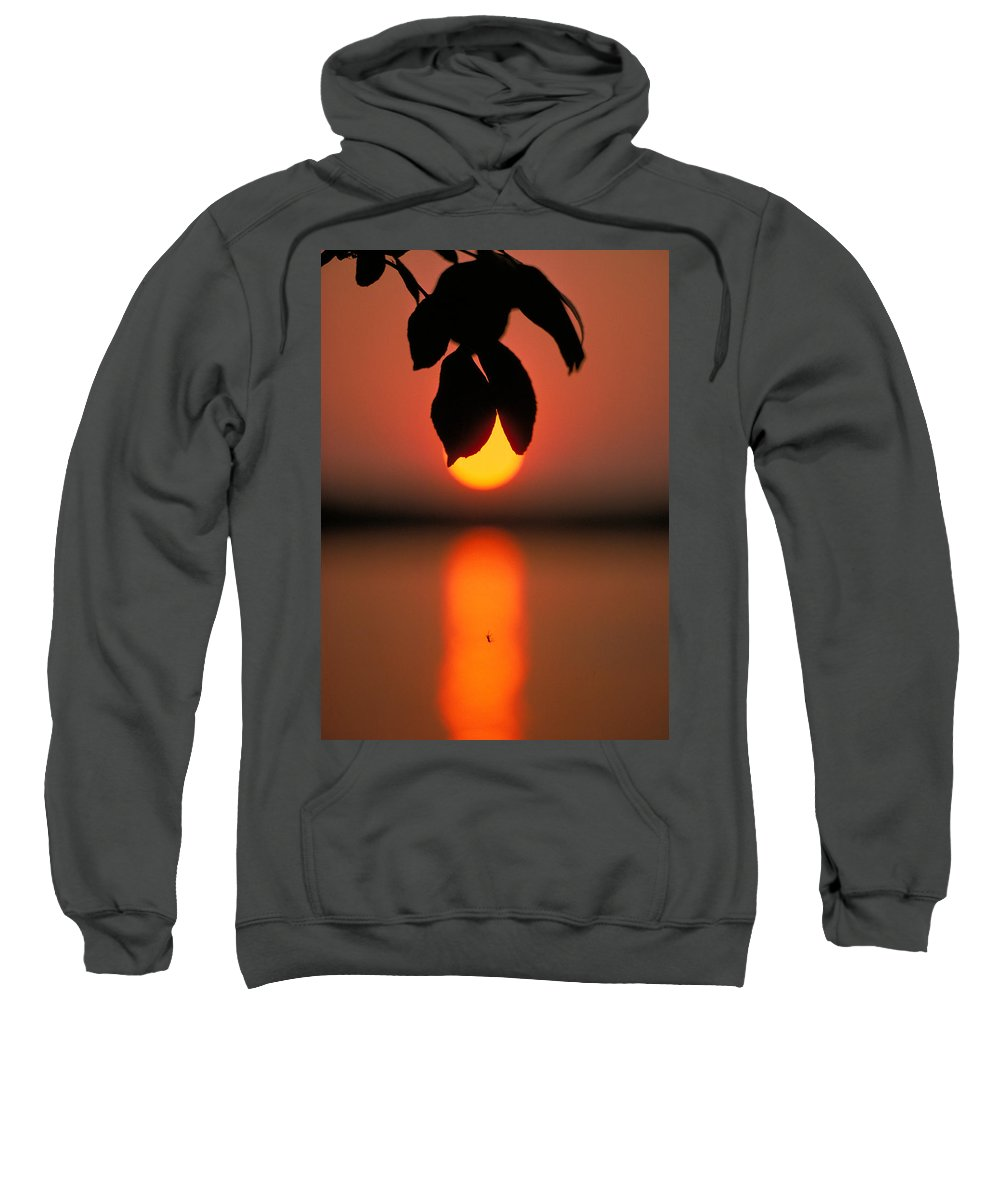 Sunset Sweatshirt featuring the photograph Sunset And Spider by Thomas Firak
