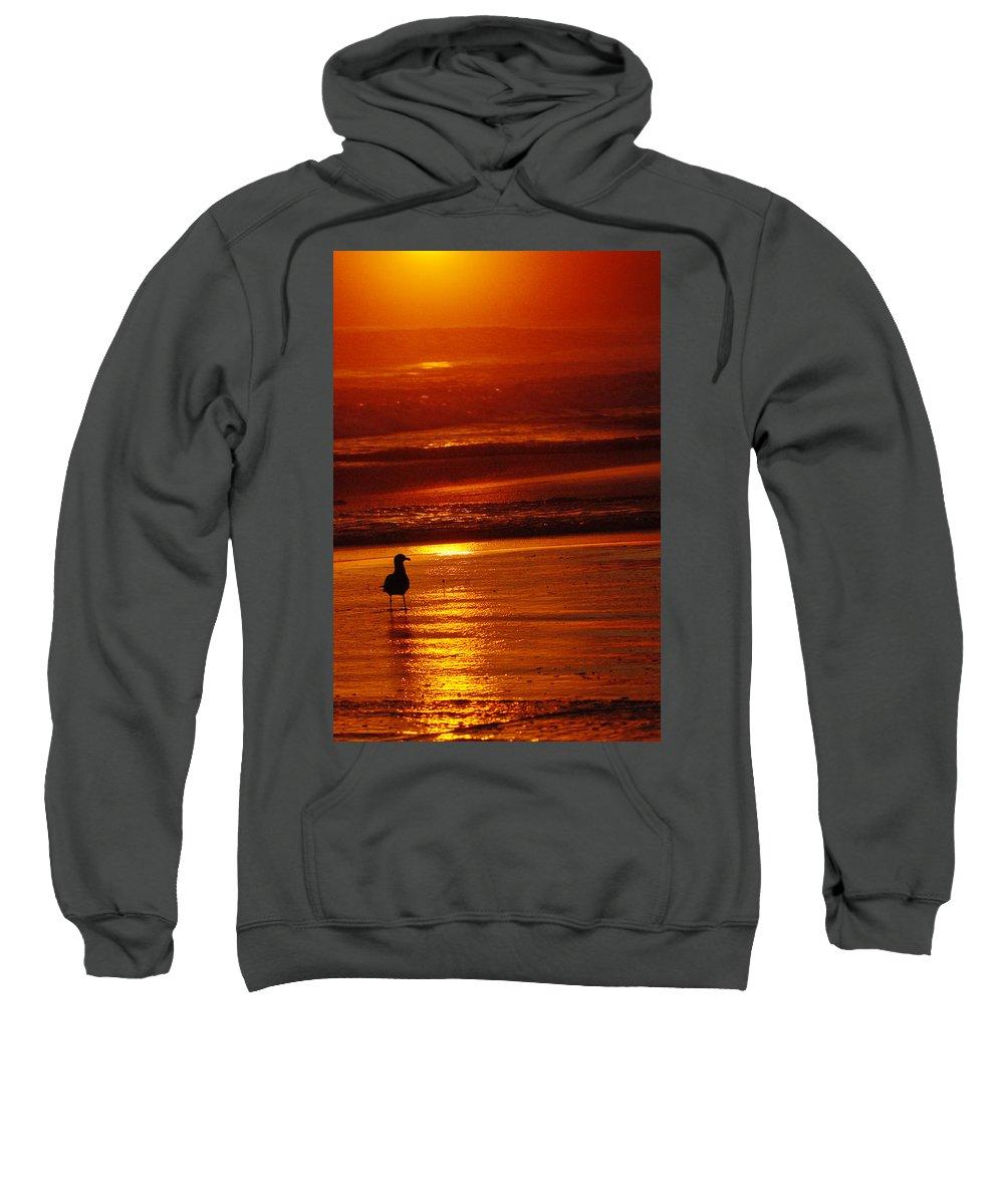 Sunset Sweatshirt featuring the photograph Sunset Bird 2 by Jill Reger
