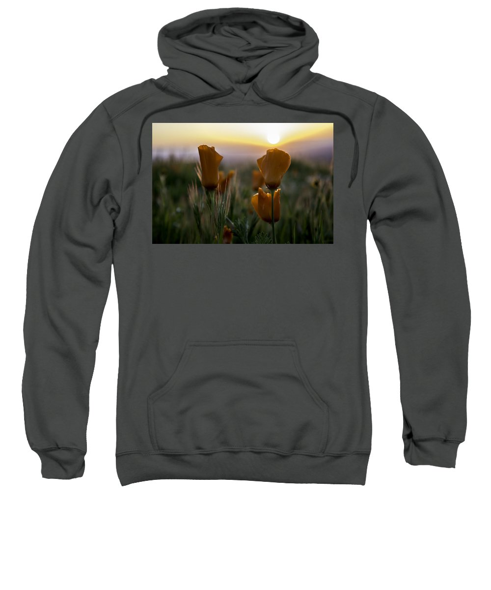 Sunset Sweatshirt featuring the photograph Sunset Poppy by Jay Billings