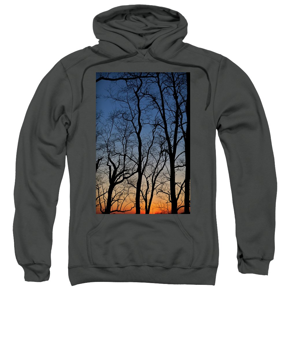 Tree Sweatshirt featuring the photograph Sunset Silhouette by Steve Gadomski