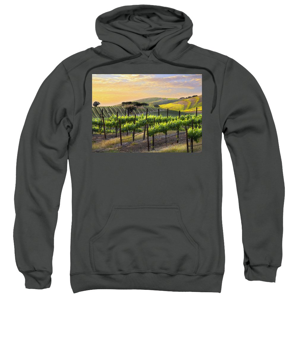 Vineyard Sweatshirt featuring the photograph Sunset Vineyard by Sharon Foster
