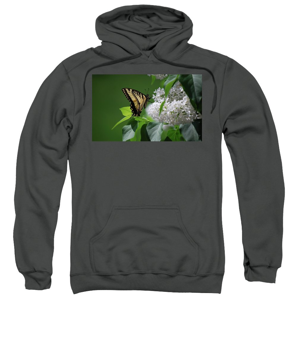 Swallowtail Sweatshirt featuring the photograph Swallowtail Beauty by Lori Tambakis