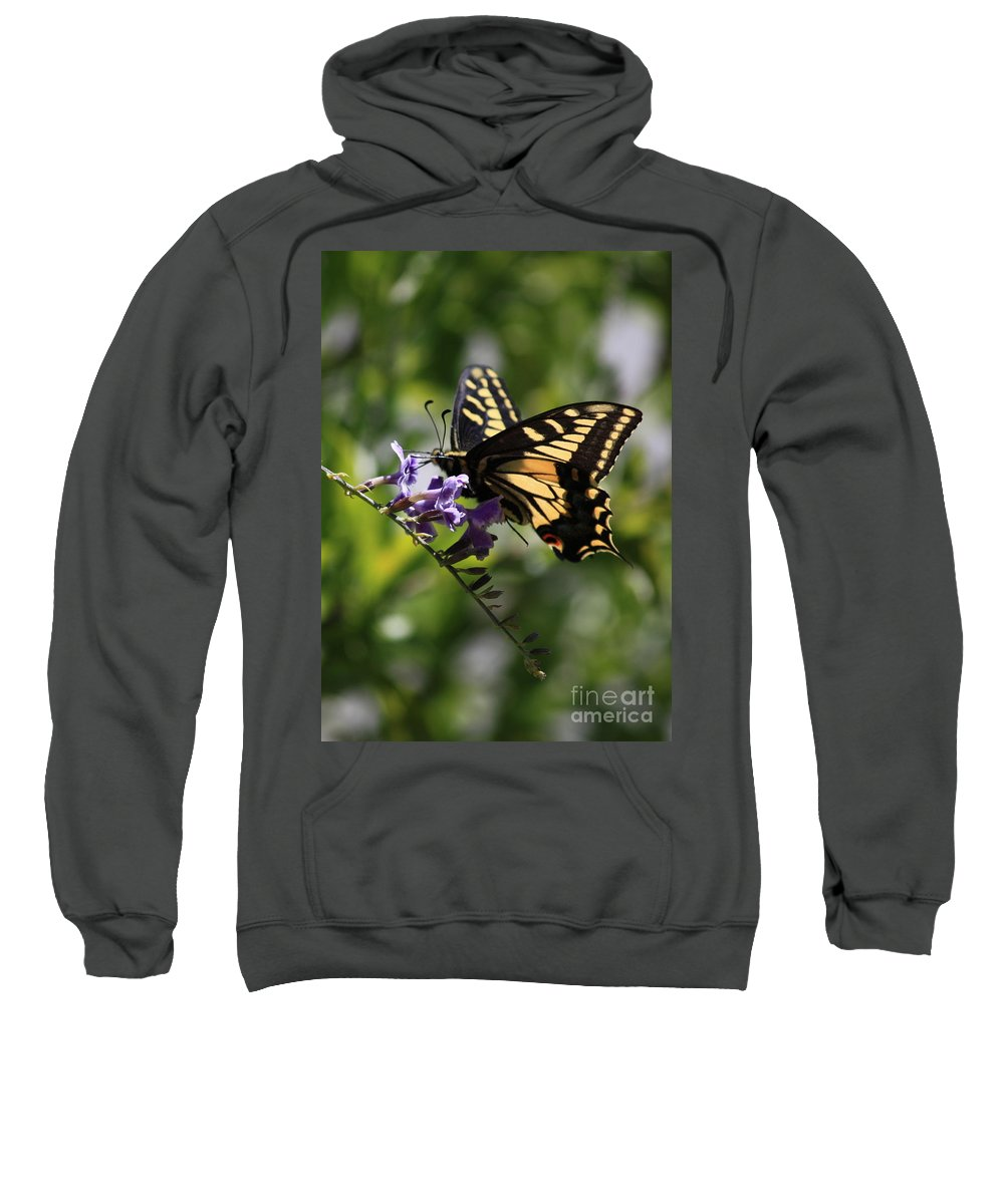 Swallowtail Butterfly Sweatshirt featuring the photograph Swallowtail Butterfly 1 by Carol Groenen