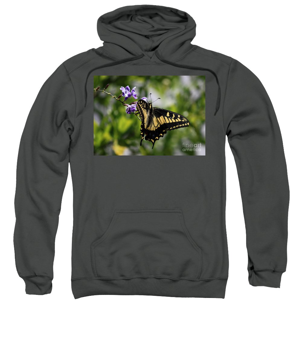 Swallowtail Butterfly Sweatshirt featuring the photograph Swallowtail Butterfly 2 by Carol Groenen