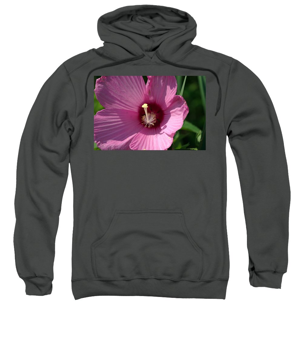 Aroma Sweatshirt featuring the photograph Swamp Rose Mallow by Jack R Perry