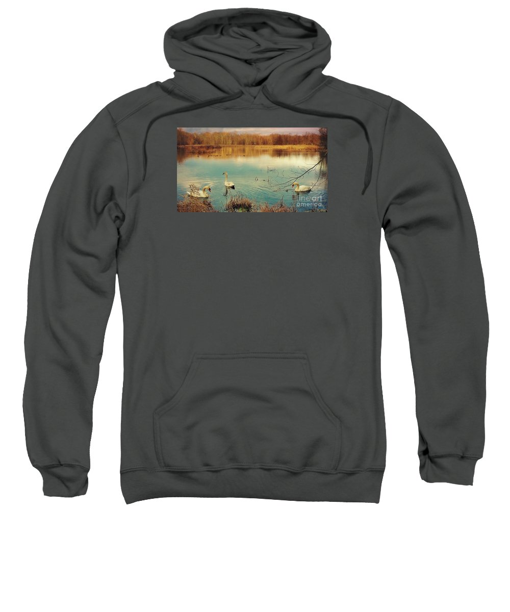 Swan Sweatshirt featuring the photograph Swan Lake by Beth Ferris Sale