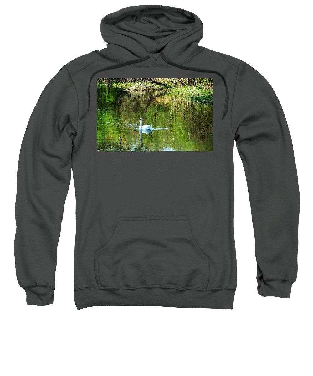 Irish Sweatshirt featuring the photograph Swan On The Cong River Cong Ireland by Teresa Mucha