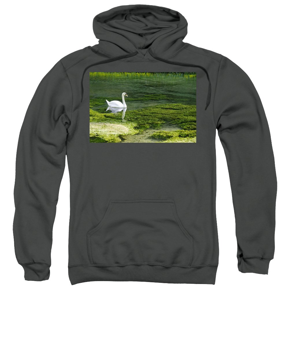 Lathkill Dale Sweatshirt featuring the photograph Swan On The River Lathkill by Rod Johnson