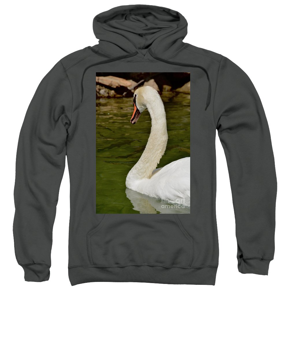 Swan Sweatshirt featuring the photograph Swan by Photos By Zulma