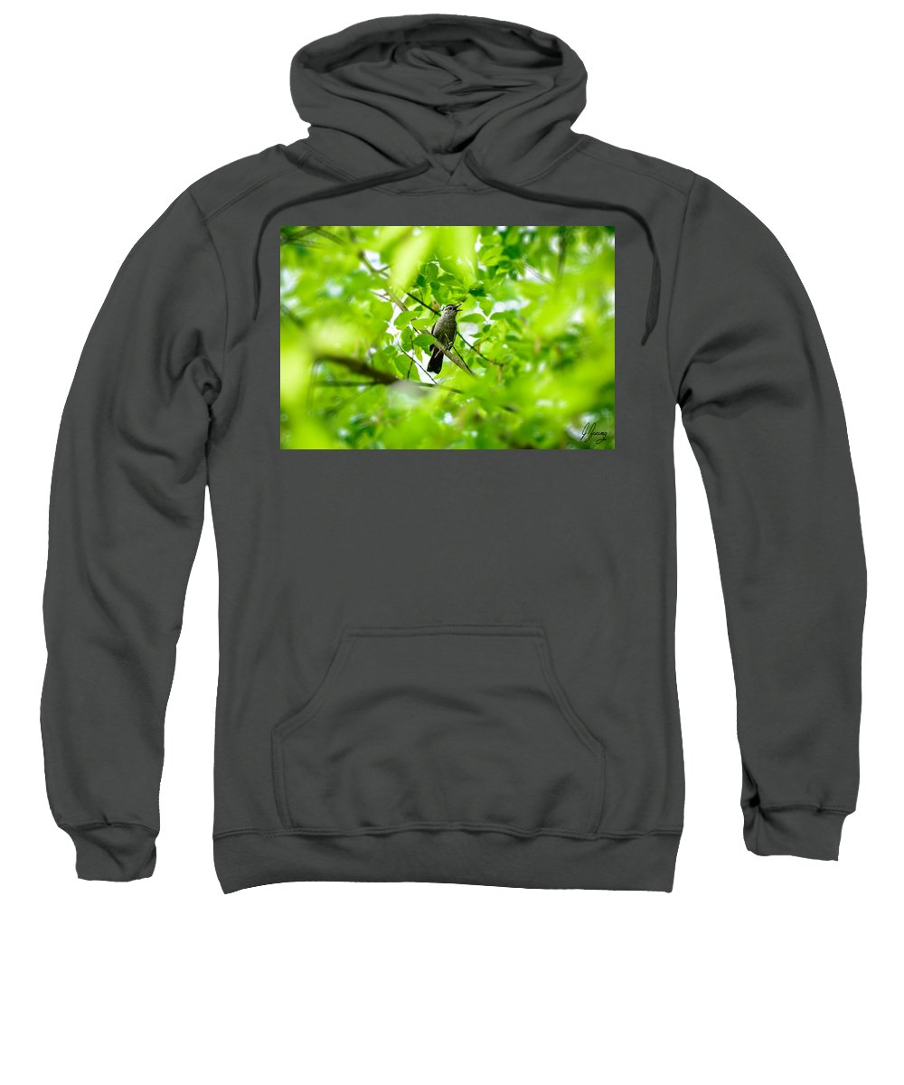 Bird Sweatshirt featuring the photograph Sweet Song Mother Bird by Joshua Zaring