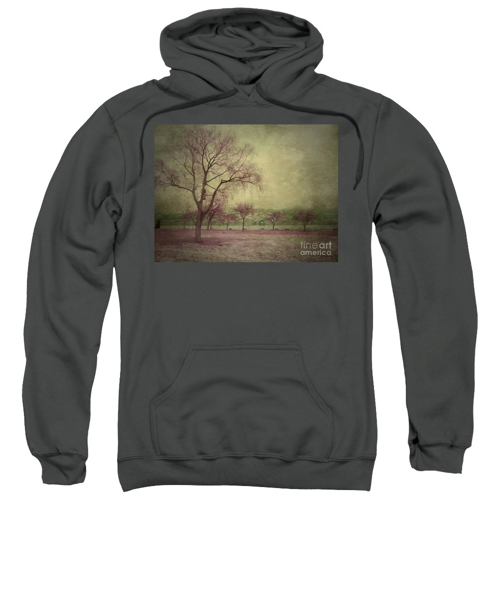 Trees Sweatshirt featuring the photograph Sweetly by Tara Turner
