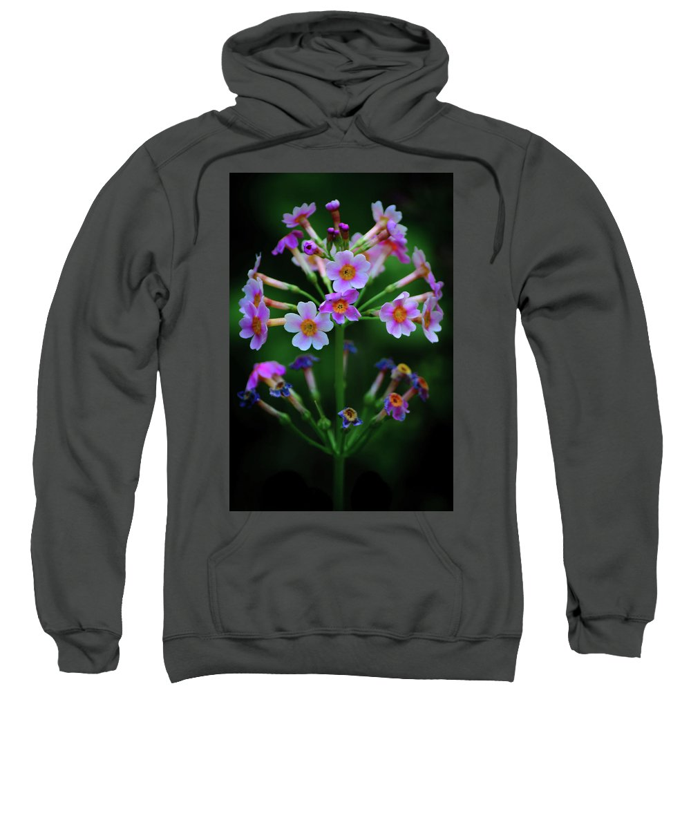 Cleveland Sweatshirt featuring the photograph Symmetry by Stewart Helberg