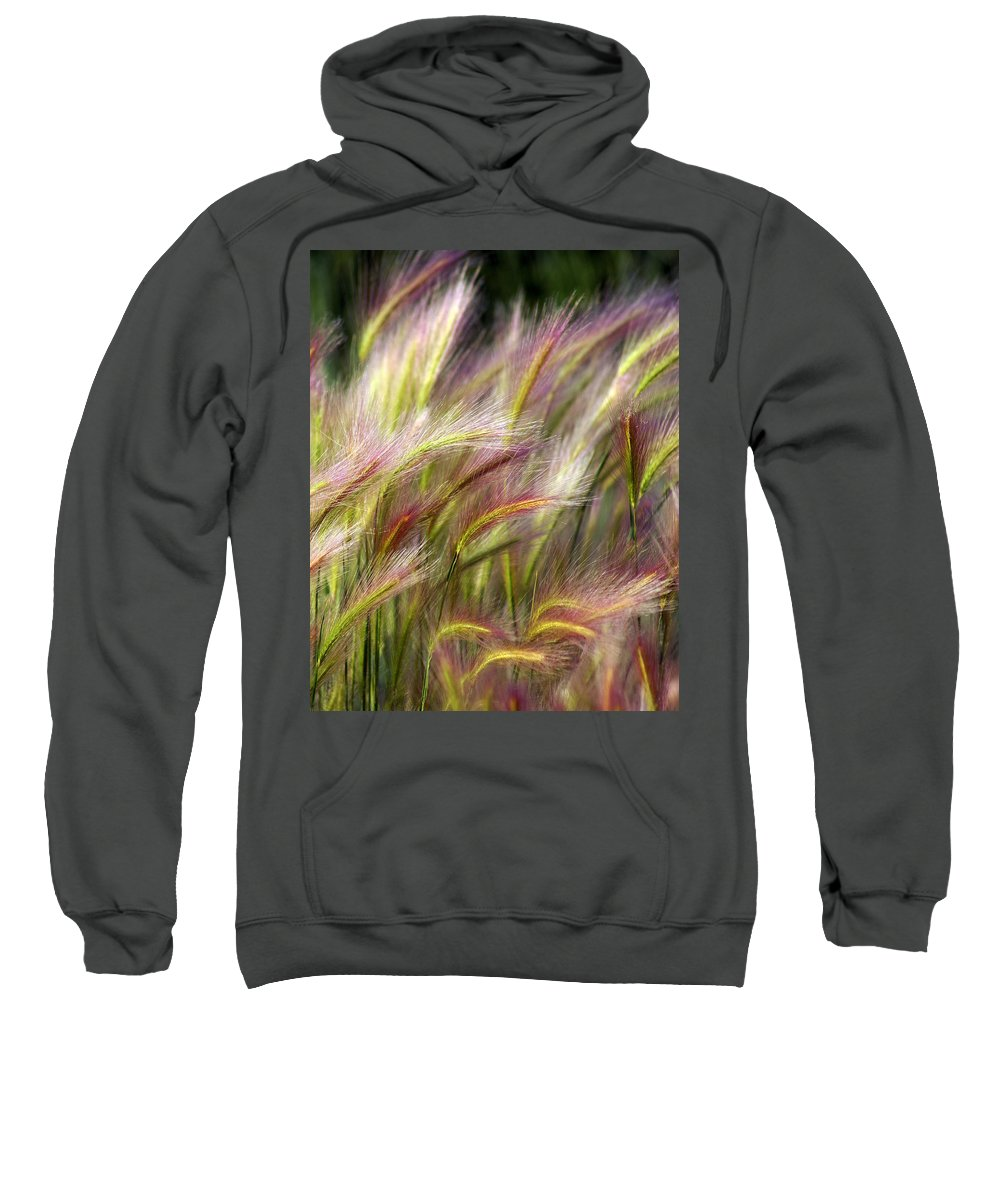 Plants Sweatshirt featuring the photograph Tall Grass by Marty Koch