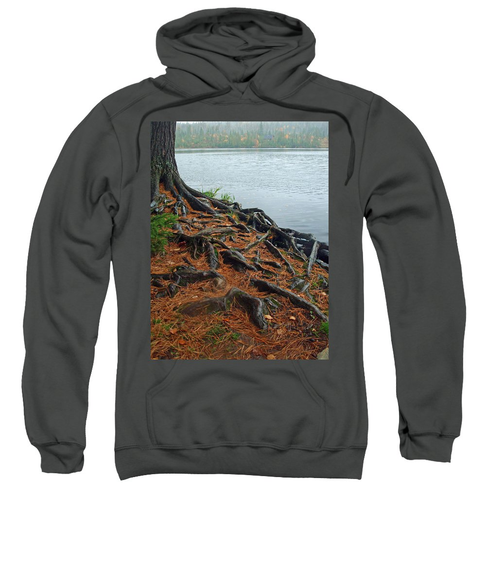 Nature Sweatshirt featuring the photograph Tamarack Needles by James Peterson