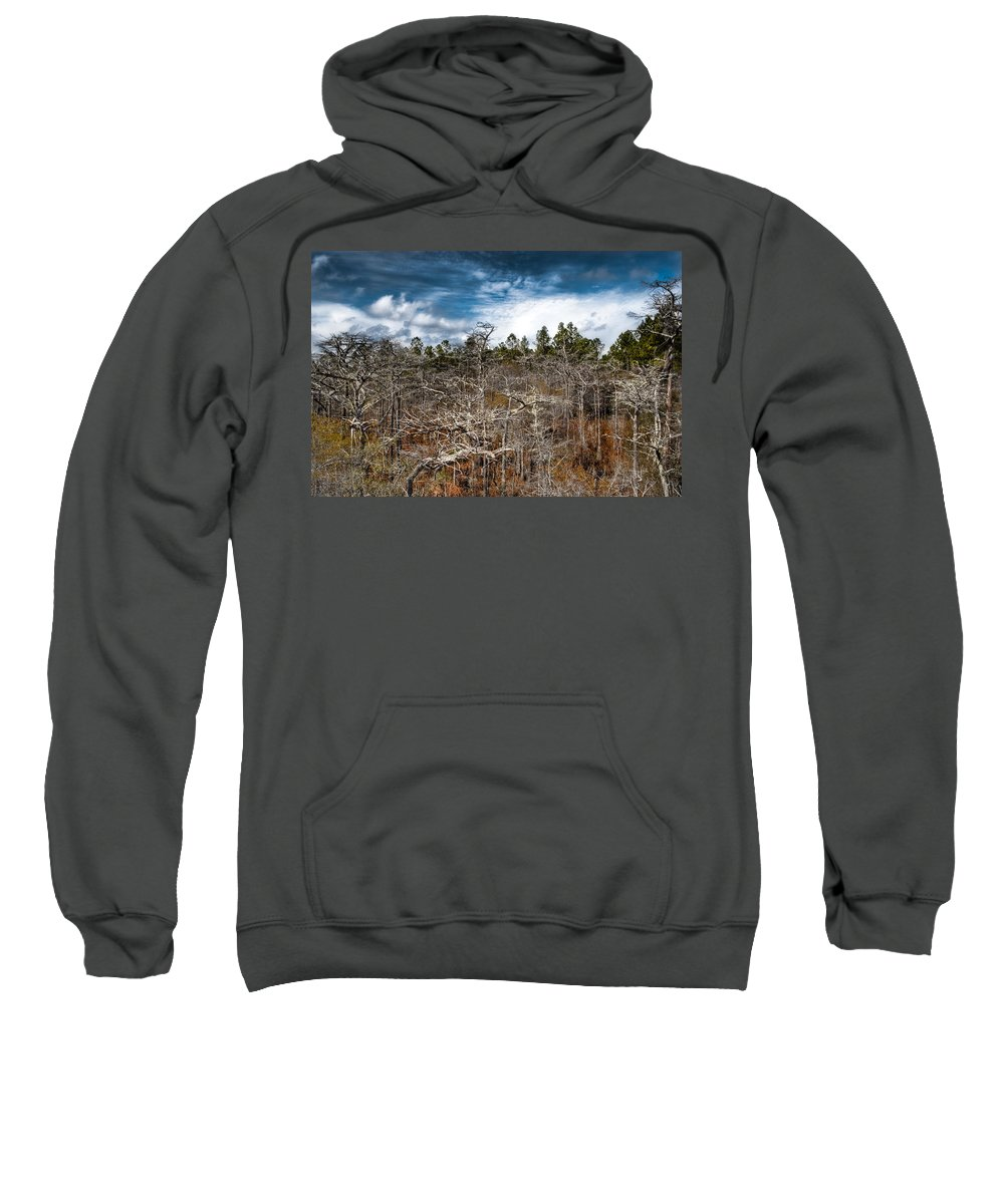 Landscapre Sweatshirt featuring the photograph Tate's Hell State Forest by Rich Leighton